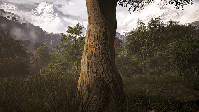 Far Cry 4 - Tree Relief - On vs. Off Interactive Comparison #2