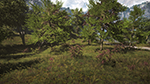 Far Cry 4 - Vegetation Quality Example #1 - Low