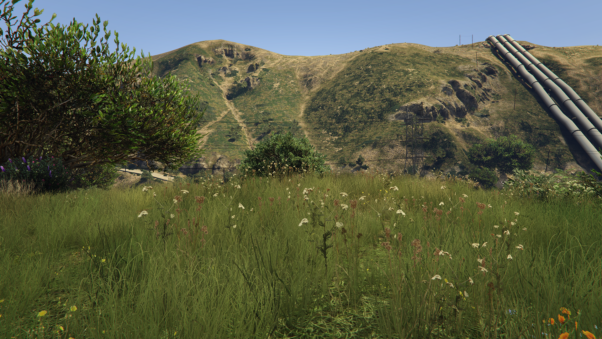 GeForce.com Grand Theft Auto V PC Grass Quality ...