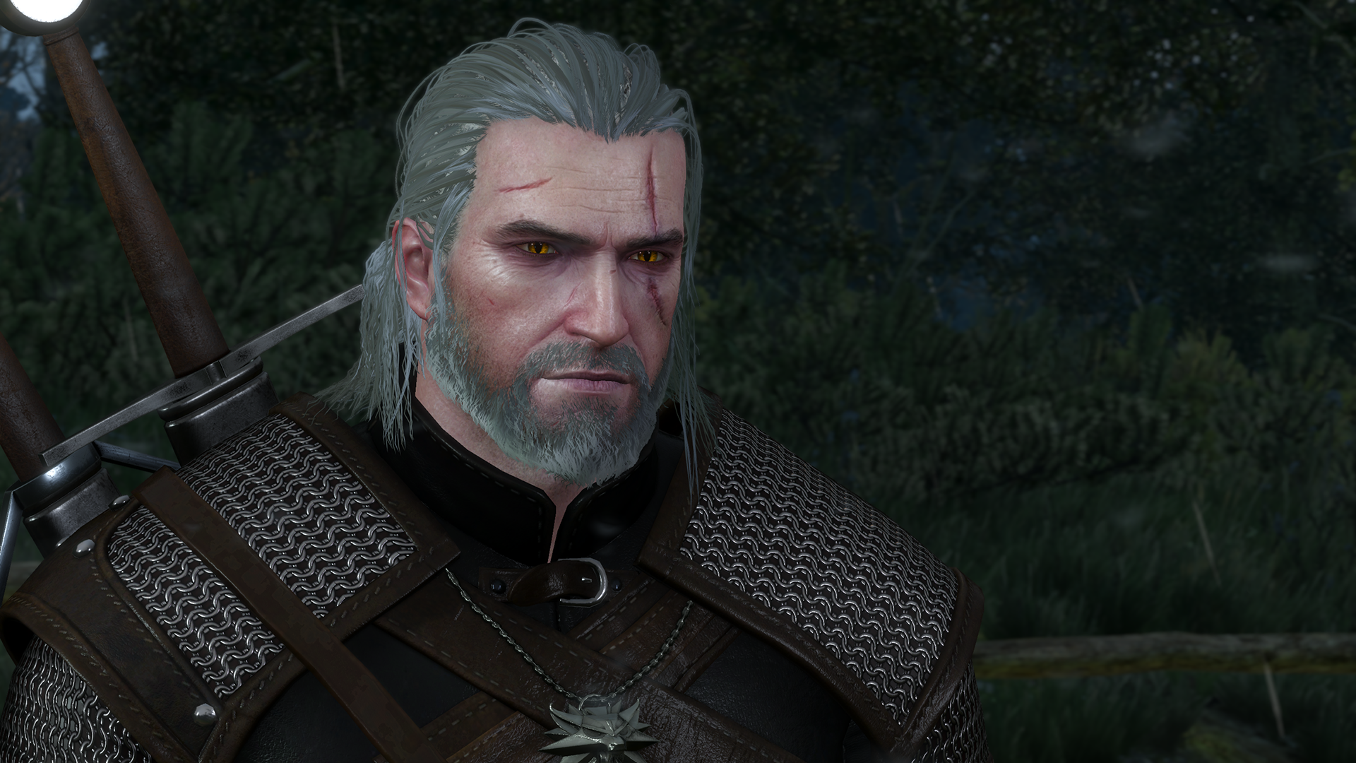 The witcher 3 wild hunt ymmv tv tropes geralts hair will even clump together and get stringy when its wet solutioingenieria Gallery