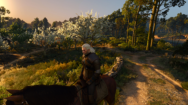 「巫師 3: 狂獵 (The Witcher 3: Wild Hunt)」- 材質品質