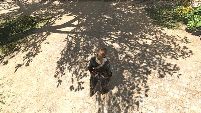 「刺客教條 4: 黑旗 (Assassin's Creed IV: Black Flag)」的 NVIDIA PCSS 動態陰影互動比較圖。