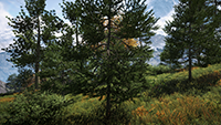 Far Cry 4 - Anti-Aliasing Quality Example #2 - NVIDIA 4xTXAA