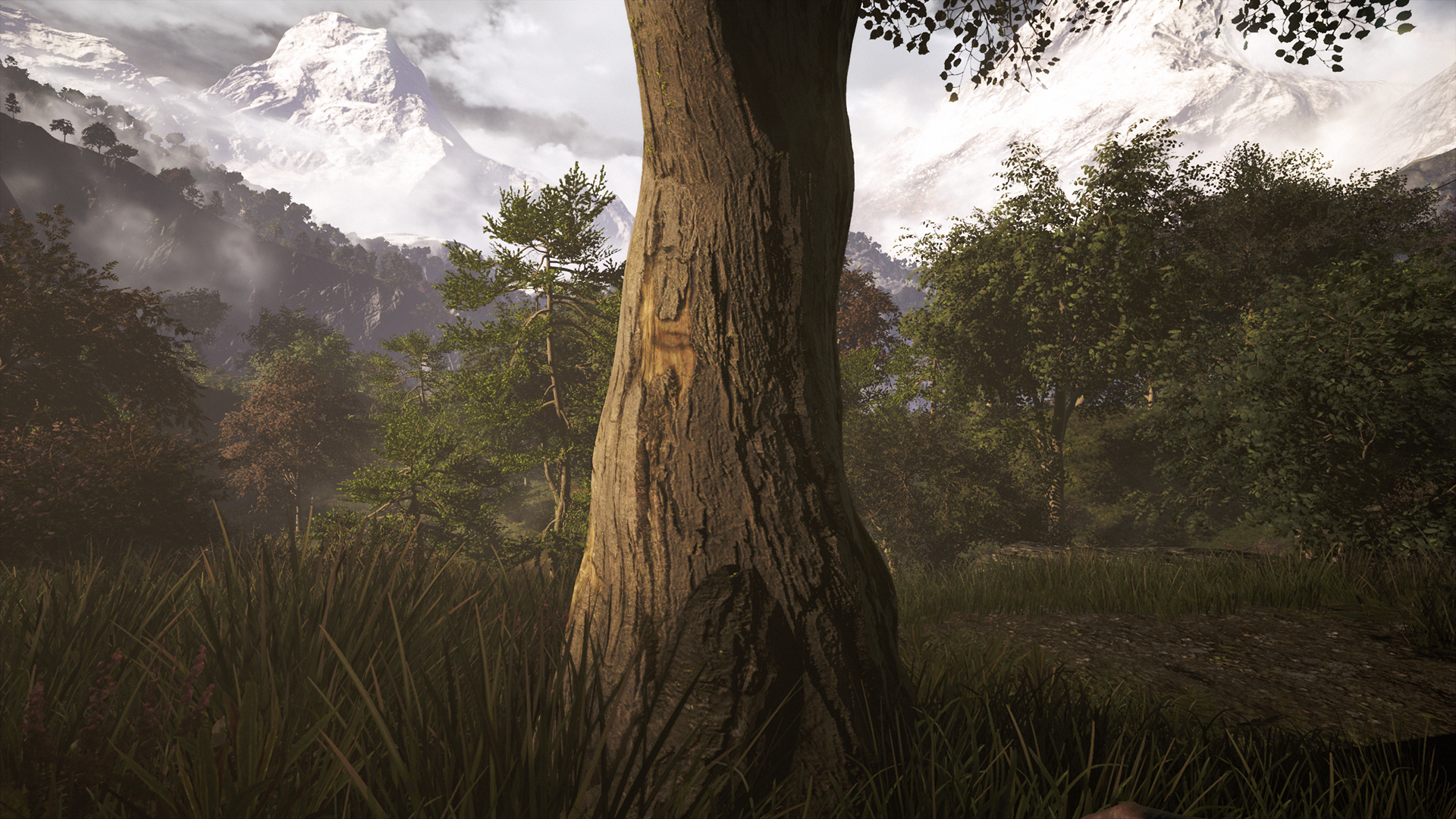 GeForce.com Far Cry 4 Trees Relief Interactive Comparison ...