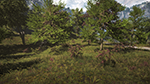 Far Cry 4 - Vegetation Quality Example #1 - Medium