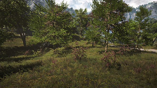 Far Cry 4 - Vegetation Quality Interactive Comparison #1