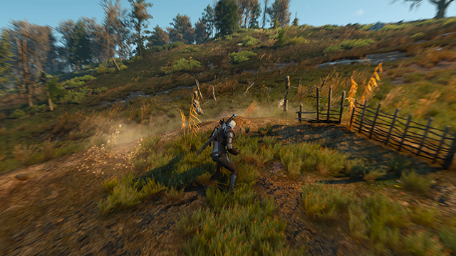 The Witcher 3: Wild Hunt - Blur Screenshot