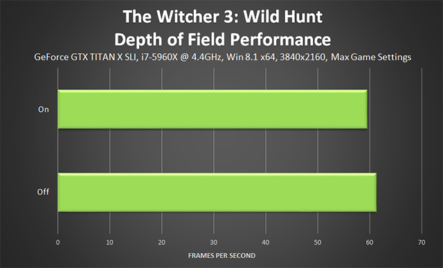 The Witcher 3: Wild Hunt - Depth of Field Performance