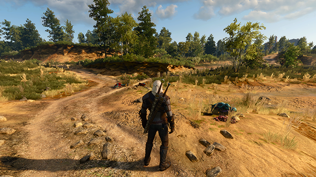 The Witcher 3: Wild Hunt - Detail Level Screenshot