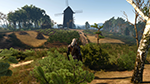 「巫师 3:狂猎 (The Witcher 3: Wild Hunt)」- Foliage Visibility Range (树叶可见距离)