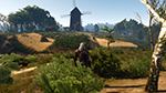 The Witcher 3: Wild Hunt - Foliage Visibility Range