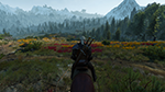 The Witcher 3: Wild Hunt - Grass Density