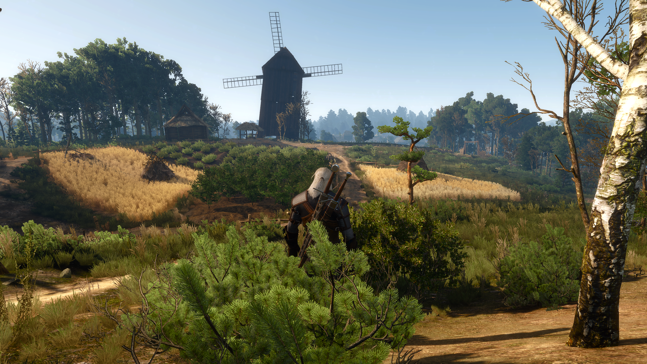 geforce the witcher 3: wild hunt nvidia dynamic super resolution