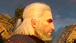 The Witcher 3: Wild Hunt - NVIDIA HairWorks Multisample Anti-Aliasing Config File Tweak