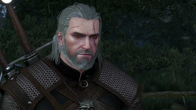 The Witcher 3: Wild Hunt NVIDIA HairWorks Wet Hair Screenshot