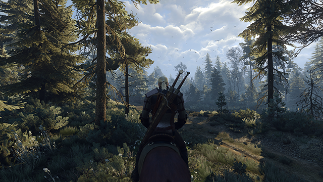 The Witcher 3: Wild Hunt PC Screenshot