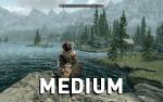 Skyrim-Detail-medium