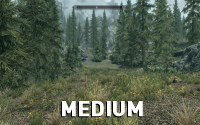 Skyrim-GrassFade-Medium