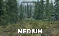 Skyrim-GrassFade-Medium