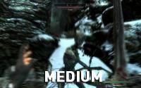 Skyrim-RadialBlurQuality-Medium