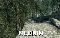 Skyrim-Textures-Medium