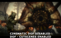Cinematic Depth of Field Disabled - Depth of Field Custcene Enabled