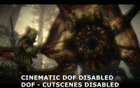 Cinematic Depth of Field Disabled - Depth of Field Custcene Disabled